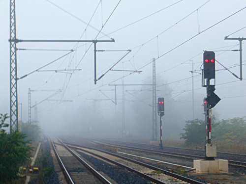Fog in Ingelheim