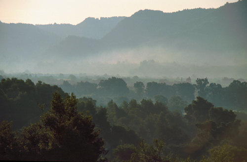 Dawn in Olympia