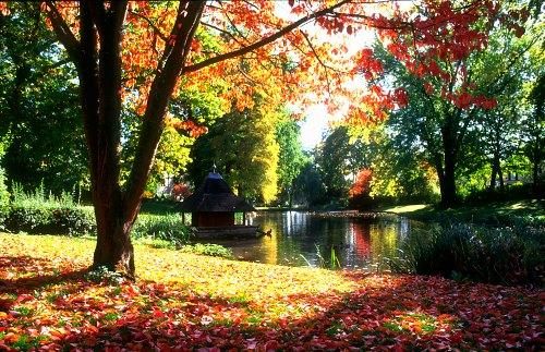 Autumn in Wiesbaden, Germany