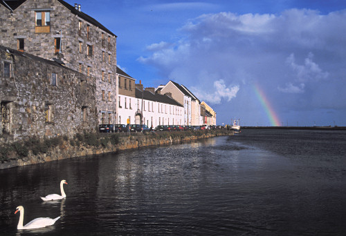 Galway Rainbow with swans