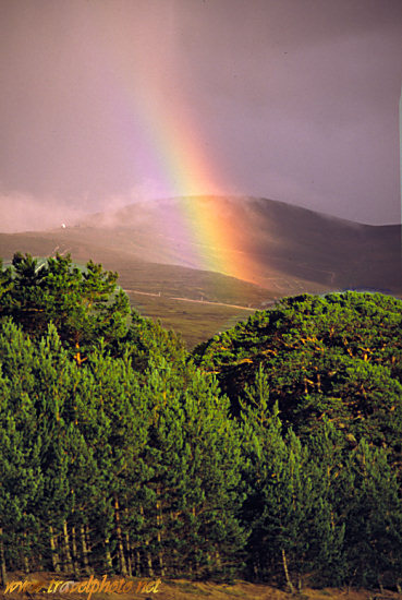 Rainbow in the Cairngorms (Cairngorm National Park, near Aviemore, Scotland UK)