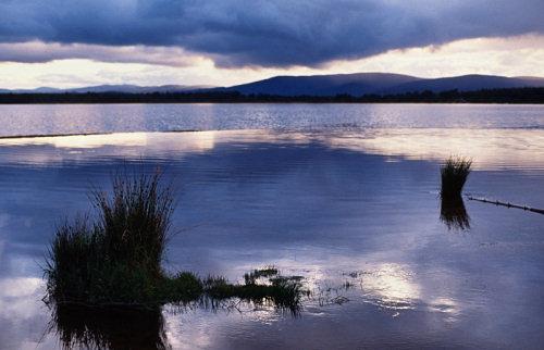 Loch Morlich,near Aviemore