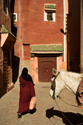 a woman with shopping bags in the Kasbah of Marrakesh, watched ba a mule