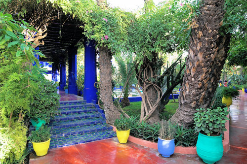 A Photo A Day Jardin Majorelle Marrakech