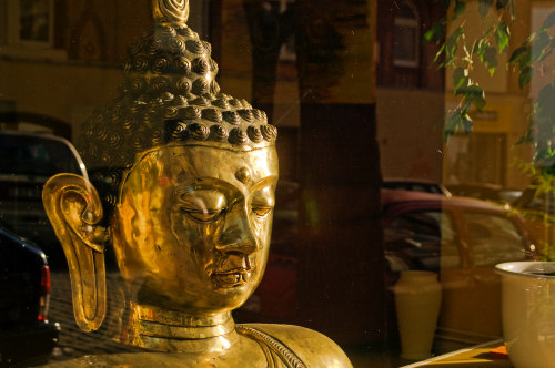 Buddha in a shop window, Wiesbaden