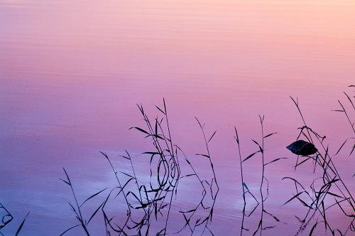 pict7954-finland500.jpg