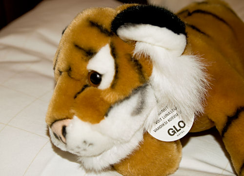 Glo beast - a cuddly Tiger on Hotel bed