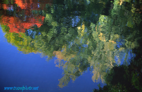 Reflection in the water of a small pool in Wiesbaden
