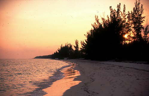 Beach in the Evening, Grand Bahama, Bahamas