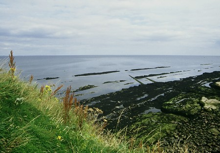 Coast near St. Andrews.