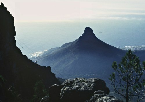 View from Table Mountain, Cape Town.
