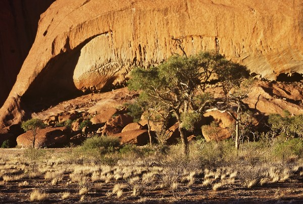 Ayer's rock - closeup. Photo: L. Bobke