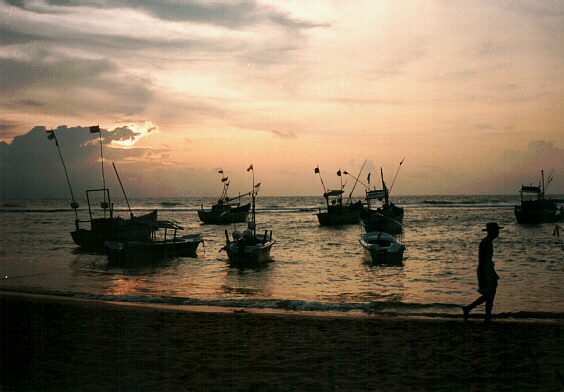 Fishing Boats in the Evening