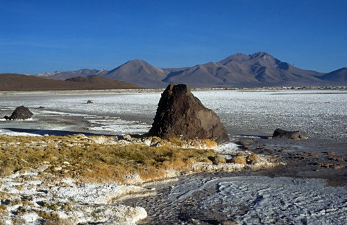 Andes: Salar (salt lake) de Surire. Photo: L. Bobke