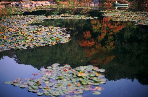 Autumn Reflection. Fragrant Mountain Park.