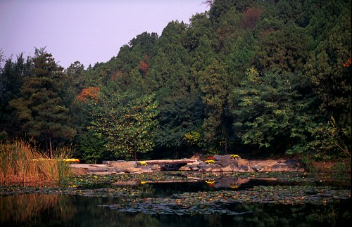 Autumn Lake, Xiangshan  Park.
