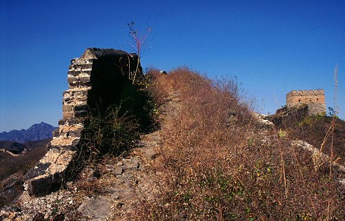 The cement used for the Great Wall contained rice flour.