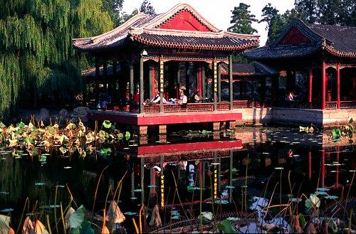 Pavillion at the lotos pond