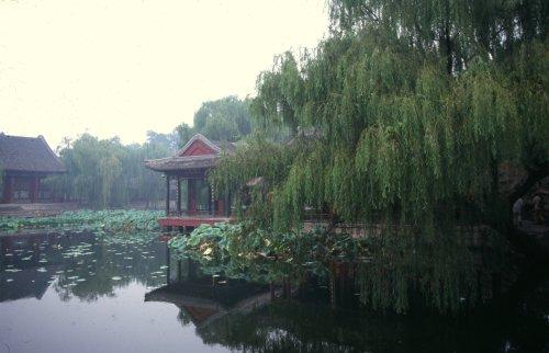 Rain at the summer palace.
