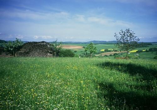 landscape in NIdda-Oberlais.