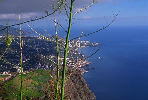 view from Cabo Girao Madeira (Portugal)