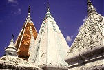 "Click here to ""visit"" Bodhgaya and Lucknow."